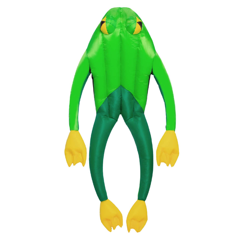 wolkenstuermer_3d_drachen_fritz_the_frog_002